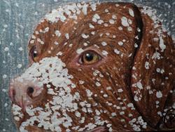 Art: Chocolate Lab Dog in Snow by Artist Pamela Godwin Manning