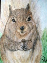 Art: Squirrel by Artist Pamela Godwin Manning