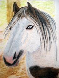 Art: Paint Horse by Artist Pamela Godwin Manning
