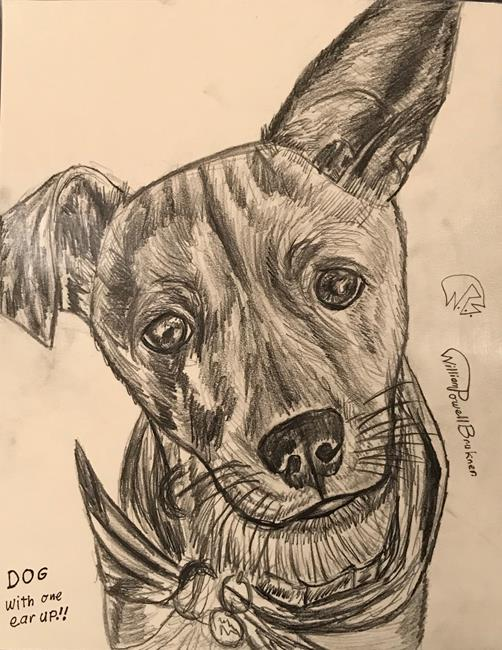 Art: DOG WITH ONE EAR UP!. by Artist William Powell Brukner