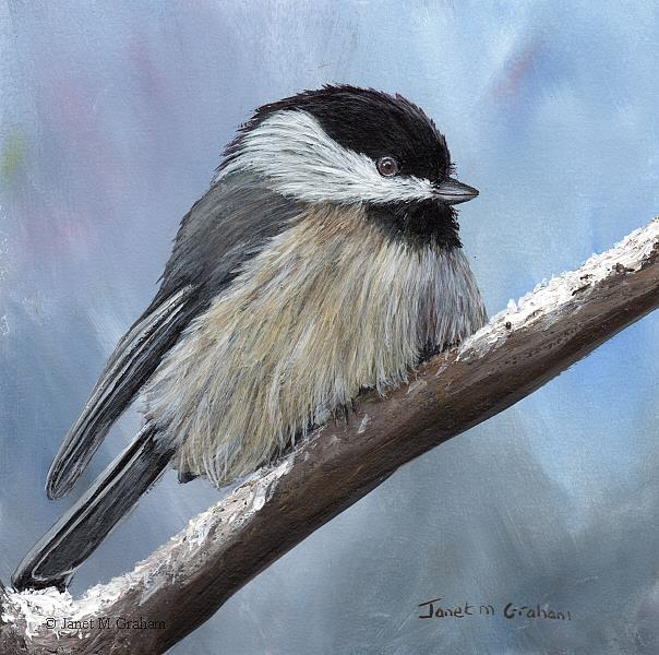 Art: Black Capped Chickadee No 7 by Artist Janet M Graham