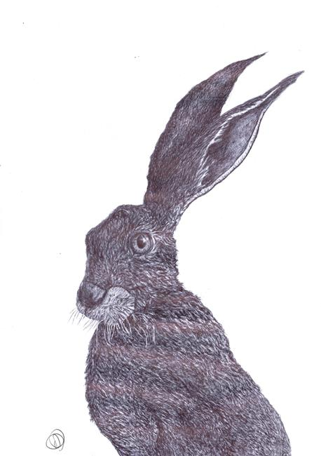 Art: THINKING HARE h3210 by Artist Dawn Barker