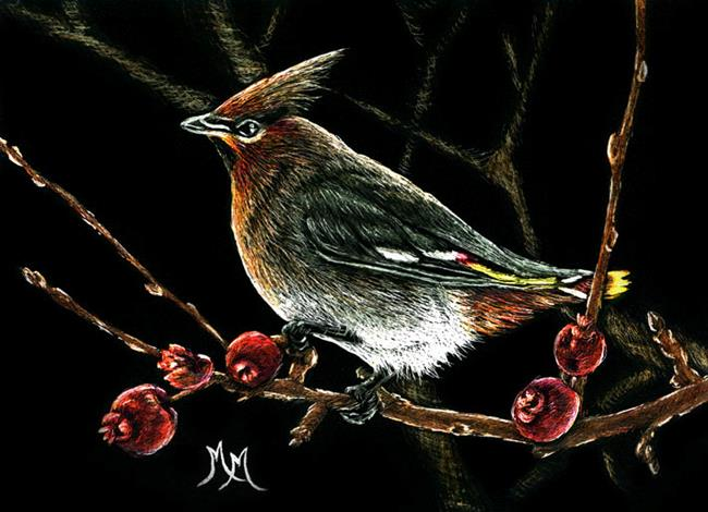 Art: Cedar Waxwing  (SOLD) by Artist Monique Morin Matson