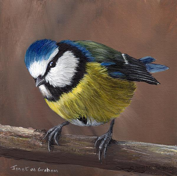 Art: Blue Tit No 7 by Artist Janet M Graham