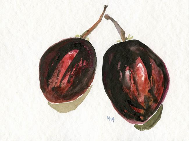 Art: Tomatillos by Artist Gabriele Maurus