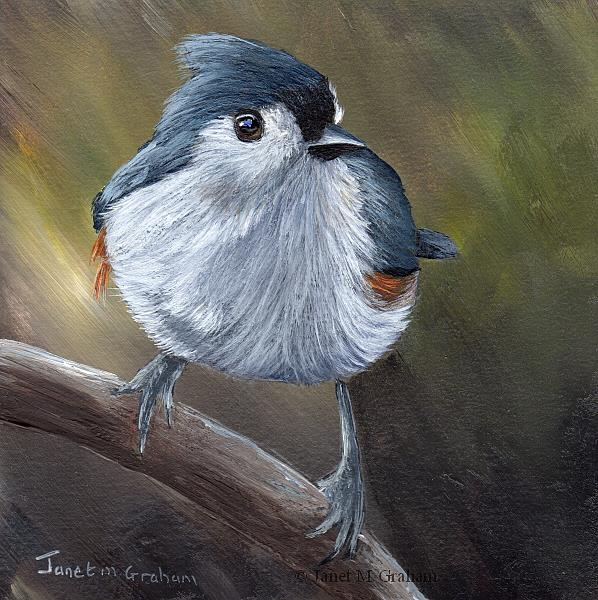 Art: Tufted Titmouse No 13 by Artist Janet M Graham