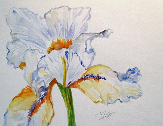 Art: White Iris by Artist Delilah Smith