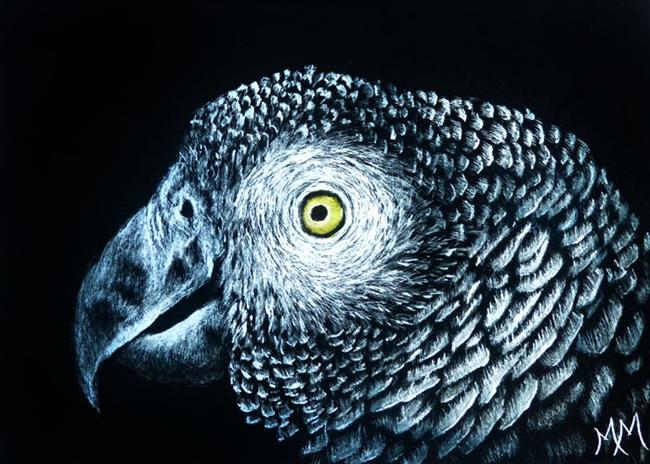 Art: African Grey Parrot  (SOLD) by Artist Monique Morin Matson