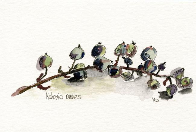 Art: Mahonia Berries by Artist Gabriele Maurus
