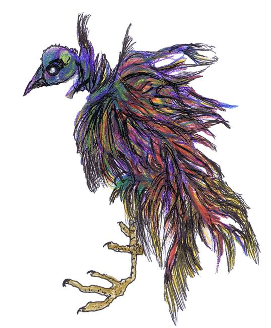 Art: BIRD DINOPHEAS birdcol by Artist Dawn Barker