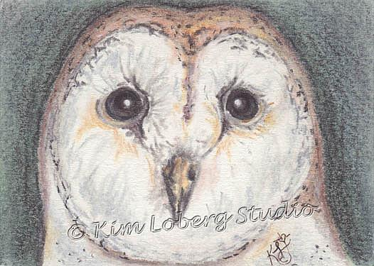 Art: Barn Owl by Artist Kim Loberg