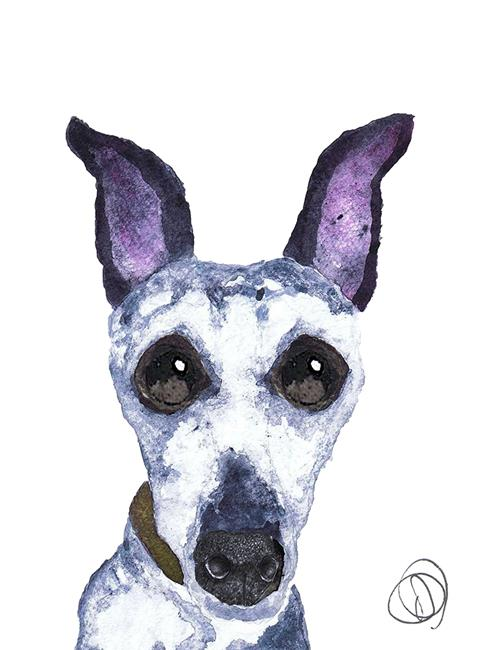 Art: GREYHOUND g268 by Artist Dawn Barker