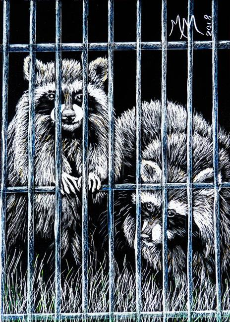 Art: Raccoons  (SOLD) by Artist Monique Morin Matson
