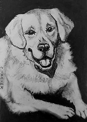 Art: ACEO Golden Retriever by Artist Camille Meeker Turner