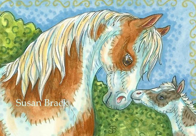 Art: BABY FACE Colt by Artist Susan Brack