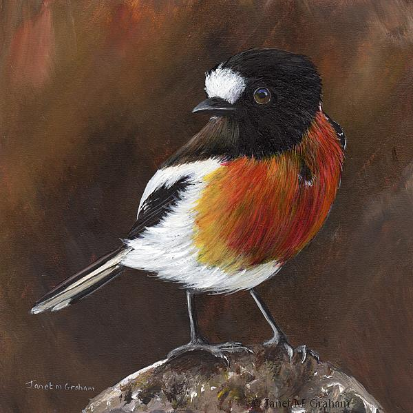 Art: Scarlet Robin No 8 by Artist Janet M Graham