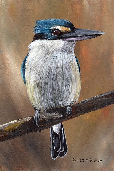Art: Sacred Kingfisher No 3 by Artist Janet M Graham
