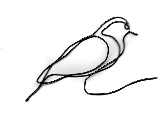 Art: Wire backyard bird by Artist Leonard G. Collins