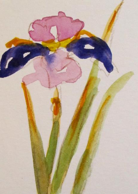 Art: Iris Aceo by Artist Delilah Smith