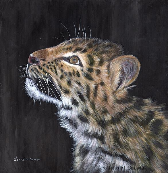 Art: Amur Leopard Cub by Artist Janet M Graham