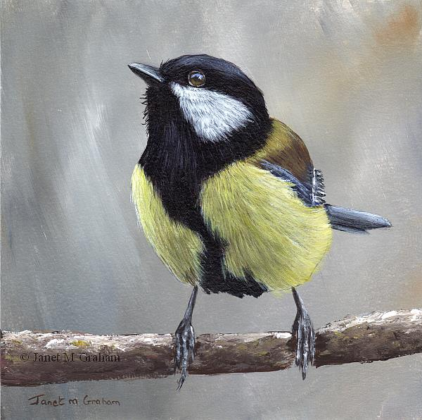 Art: Great Tit No 3 by Artist Janet M Graham