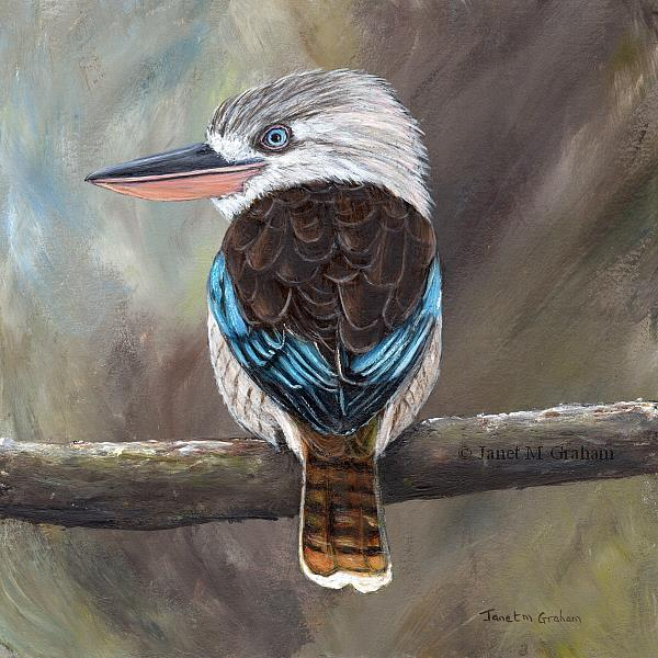 Art: Blue - Winged Kookaburra by Artist Janet M Graham