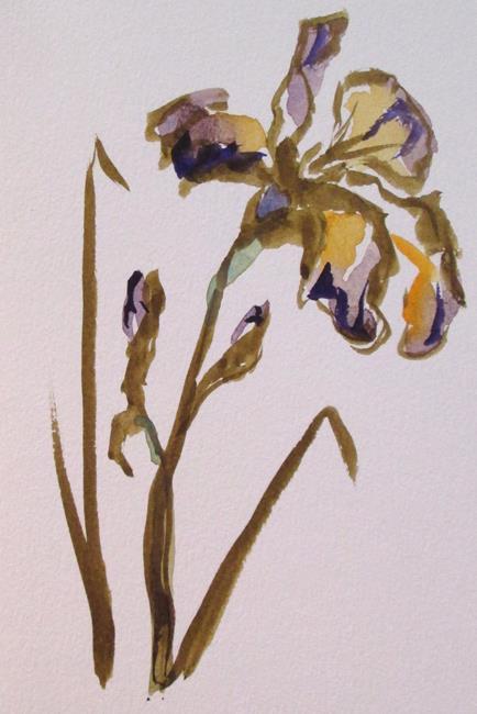 Art: Iris No. 13 by Artist Delilah Smith