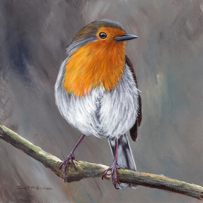 Art: Robin No 16 by Artist Janet M Graham