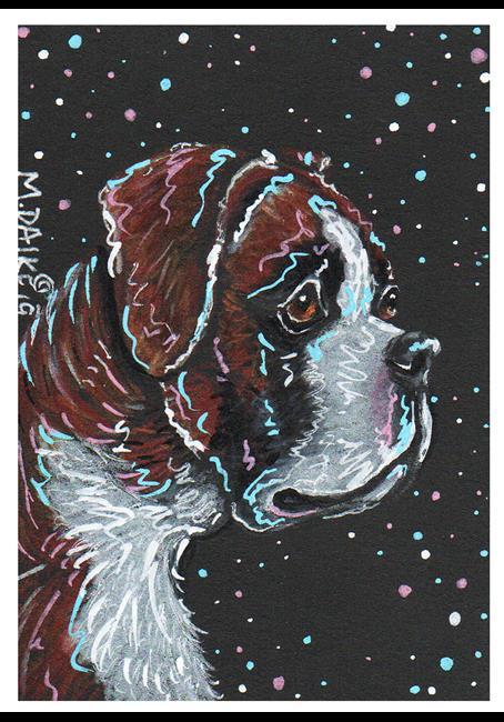 Art: stars 4 boxer ggeg.jpg by Artist Melinda Dalke