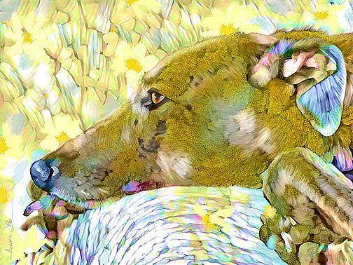 Art: greyhound daisy lr by Artist Alma Lee