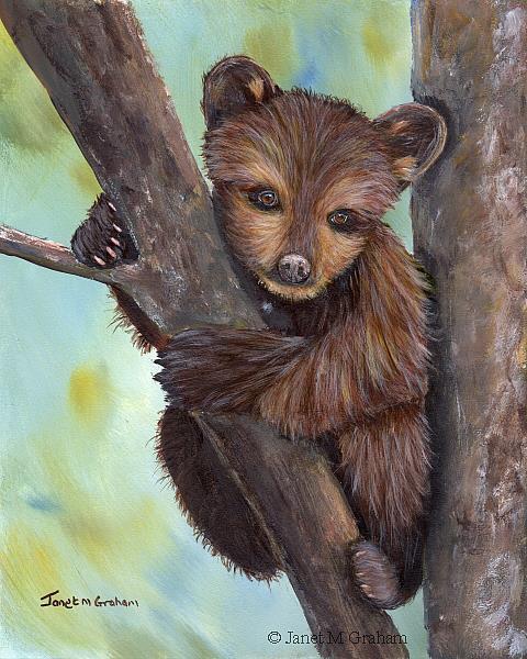 Art: Little Bear Cub by Artist Janet M Graham