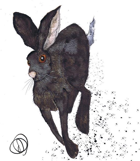 Art: RUNNING HARE h3336 by Artist Dawn Barker