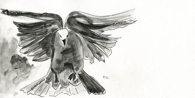 Art: Dove Studies I by Artist Gabriele Maurus