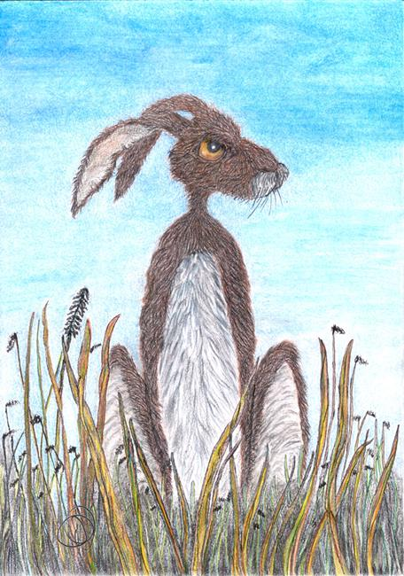 Art: HARE IN FIELD H3702 by Artist Dawn Barker
