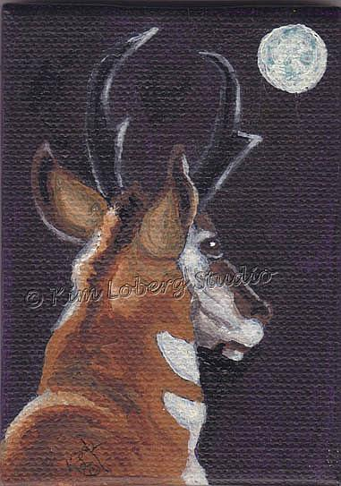 Art: Pronghorn in the Moon-Light by Artist Kim Loberg