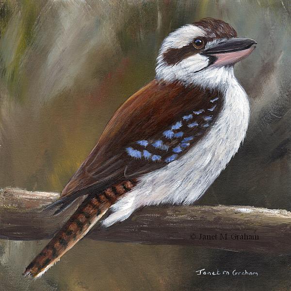 Art: Laughing Kookaburra No 3 by Artist Janet M Graham
