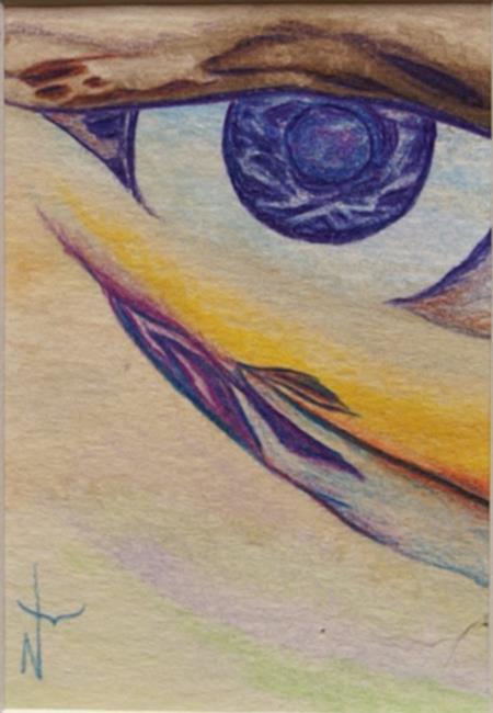 Art: Eye Scape by Artist Nancy Barnes