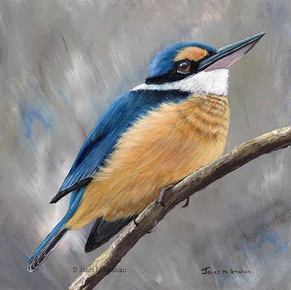 Art: Sacred Kingfisher No 5 by Artist Janet M Graham
