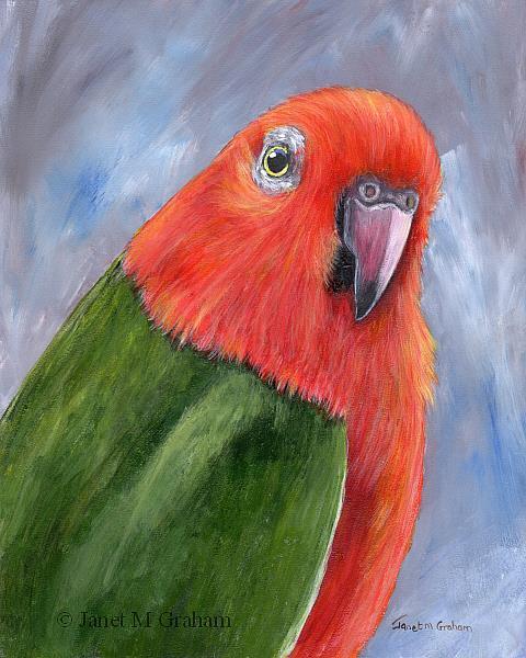 Art: King Parrot by Artist Janet M Graham