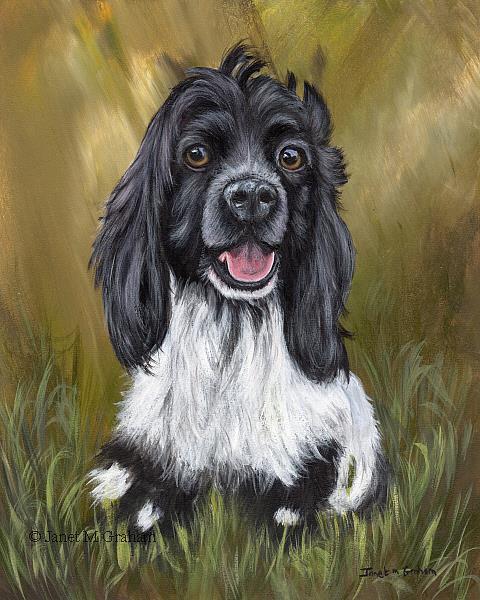 Art: Cocker Spaniel Puppy by Artist Janet M Graham