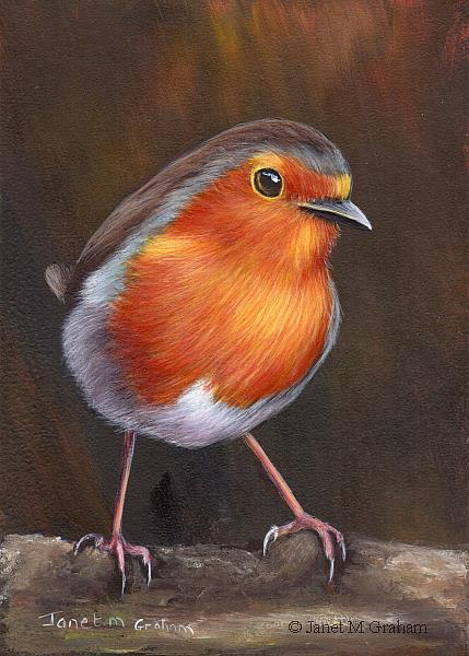 Art: Robin No 17 by Artist Janet M Graham