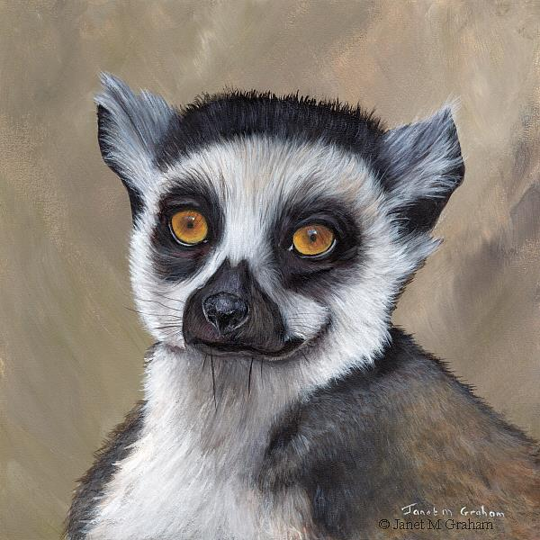 Art: Lemur by Artist Janet M Graham