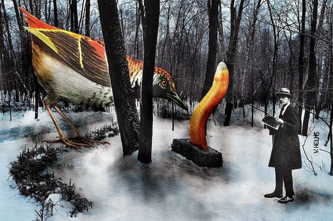 Art: The Birdwatcher by Artist Vicky Helms