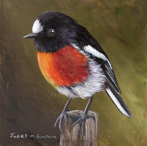 Art: Scarlet Robin No 10 by Artist Janet M Graham