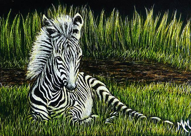 Art: Zebra Foal  (SOLD) by Artist Monique Morin Matson