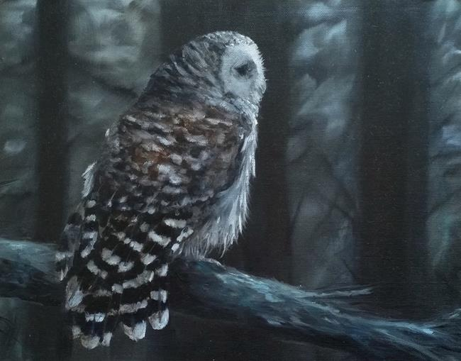 Art: Barred Owl by Artist Kimberly Vanlandingham