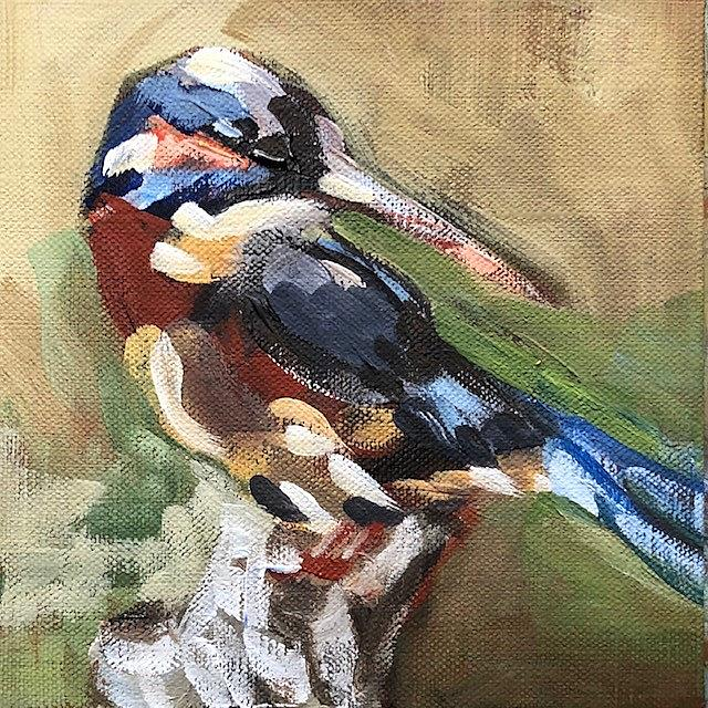Art: king fisher by Artist Cynthia Kathleen Agathocleous