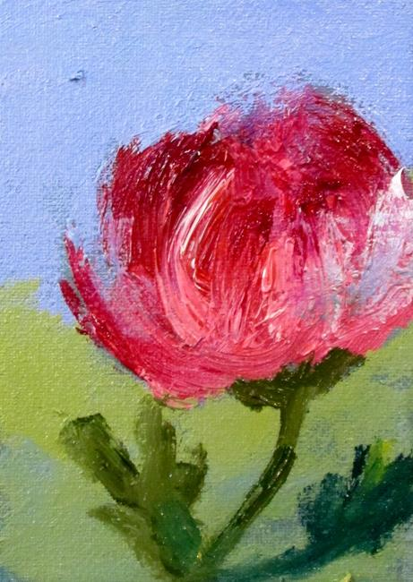 Art: Aceo Pink Peony by Artist Delilah Smith