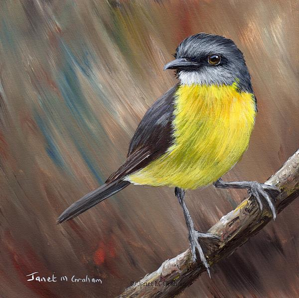 Art: Eastern Yellow Robin No 6 by Artist Janet M Graham