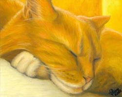 Art: Sunlit Siesta by Artist Leanne Wildermuth